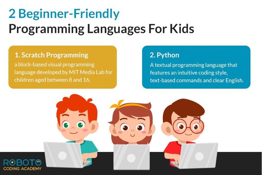 Beginner Friendly Programming Languages